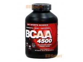 AST BCAA 4500 (500 капс)