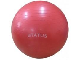Мяч гимнастический с насосом